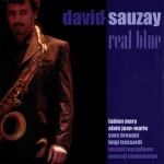 DAVID SAUZAY Real Blue 2008